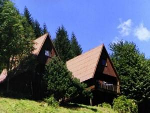 oboz1999-08